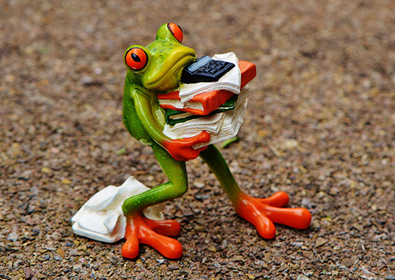 st century frog